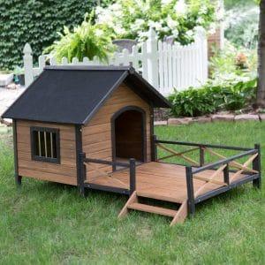מלונה לכלב מעץ מעוצבת